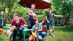《商業周刊》賴清德數字管理學 流浪犬三年少一半