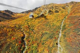 仙境立山黑部 獨特秋景綺麗壯闊