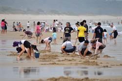 金門花蛤季登場 紅男綠女解放海灘