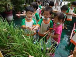 中市開非營利幼兒園 2年內再設9園