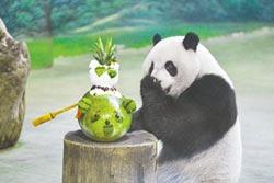 「圓仔像玩具」 議員批生態假的 動物園回應功能取向也是重要考量