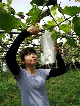 白毛台女王鄧惠郡 從植物身上學取捨