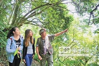 新北小旅行 雙溪、貢寮、烏來生態體驗