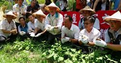 竹縣耕讀生活趣 親手挖地瓜體驗農家樂