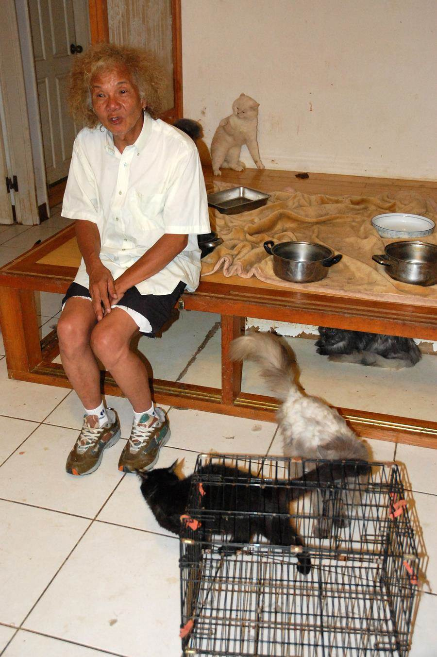 3年前曾因破屋救貓,還在鏡頭前不捨落淚,人稱「貓爺爺」的黃天恩(圖)如今被踢爆假認養真詐財劣行。(楊明峰翻攝)