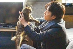 《如果這世界貓消失了》量身造情境 宮崎葵瀑布前哭喊圓作者夢