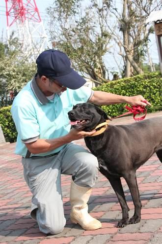 中市新法 寵物臨終服務師需教育訓練領證照