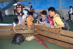 「寶可夢」真實版!親子體驗手摸爬蟲類