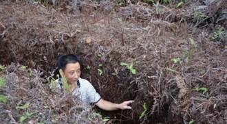 大陸閩東發現疑似紅軍戰壕遺址