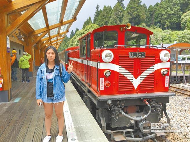 遊客到阿里山森林遊樂區搭小火車,體驗短暫的森鐵風情。(廖素慧攝)