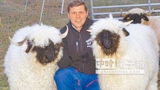 瑞士黑鼻綿羊 全球最Q