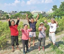 新故鄉動員令》二林打造無毒全穀鄉 鼓勵不噴農藥 田龜計畫友善農法