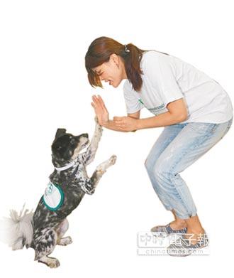流浪狗變治療犬 小美融化腦麻兒