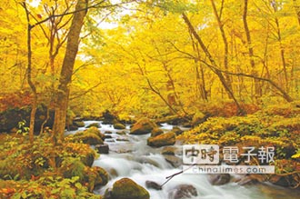 日本東北賞楓去 新幹線北延新函館點亮紅葉名所