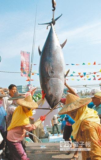 4歲以下「未成年」 被捕撈無法繁殖 南方黑鮪捕撈 採總量管制