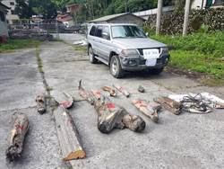 山老鼠非法撿滯留木 衝撞警車變強盜罪