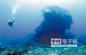 綠島千年香菇 不敵強颱倒塌 全球最大單體微孔珊瑚 潛水員心碎搶救