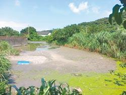 暗管排廢水 汙染老梅溪 養豬場勒令停養