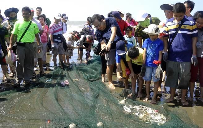 最後漁獲不多,仍引起民眾好奇觀看。(楊明峰攝)