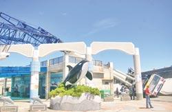 梅姬發威 毀賞鯨碼頭屋頂 700噸吊車被吹翻