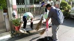 中市環局籲颱風後積水容器「呼乾啦!」