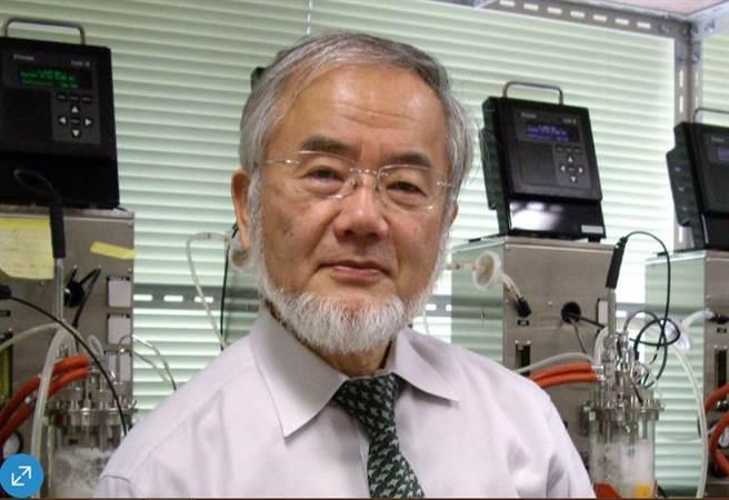 日本東京工業大學榮譽教授大隅良典獲頒諾貝爾醫學獎,這也是連續3年由日本人獲獎。(美聯社)