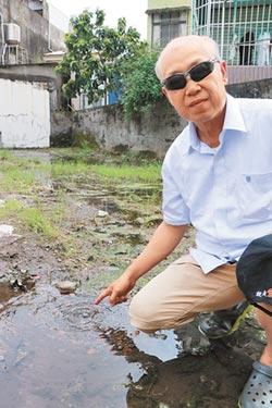 荒地湧地下水「恐孳生病媒蚊」