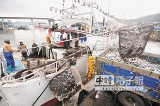 東北角沿岸漁會擬訂標準 護鯖魚苗 適度休漁
