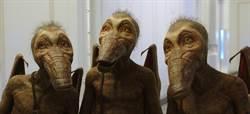 《星際特工瓦雷諾》海報 驚見可達鴨+化石翼龍變種?