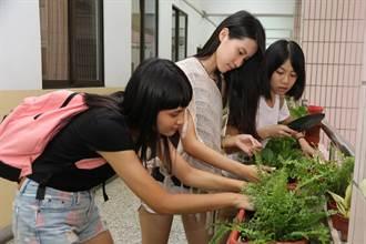 興大「綠手指傳習」班草、班花自己種