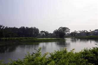 漫步香湖公園 嘉市黃金軸線貫通