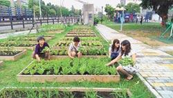 世界糧食日專刊》打造社區糧倉 遏止食安疑慮