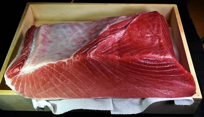 用來作壽司的「本鮪」中腹肉,分布細緻均勻的油花,如頂級牛肉般令人垂涎。(圖/姚舜攝)