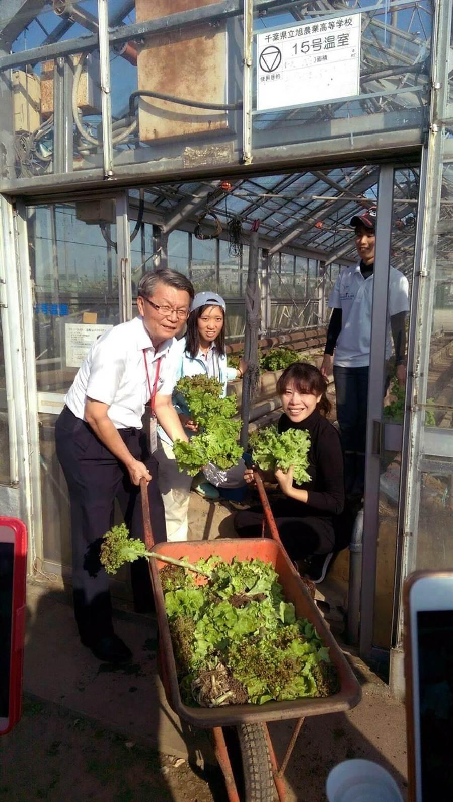 教育局副局長王進焱體驗日校的在地食材運作。(教育局提供)