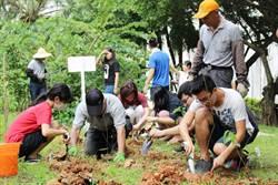 長庚大學植樹栽種500株樹