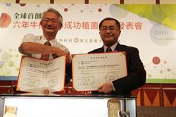 樹王生技取得全球首創「6年生牛樟椴木植菌技術」