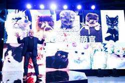 體驗「互聯網+晚會」就在2016天貓雙11狂歡夜