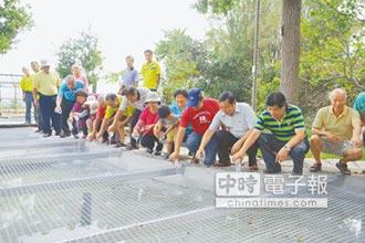 九湖改造錦鯉池 復育蓋斑鬥魚