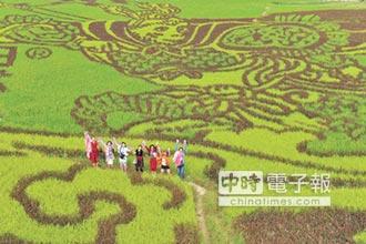 廣西稻田美猴王 旅遊新景點