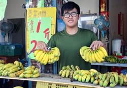 印尼青年屏東種蕉 用農產與台灣「蕉」朋友