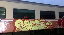 台鐵車廂遭外籍人士塗鴉 2人已出境