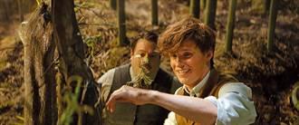 J.K.羅琳再戰魔法世界 怪獸開出69億高票房