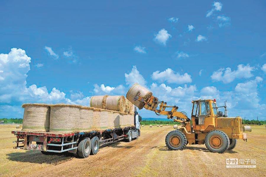 台灣國際農業開發股份有限公司已設立登記,據悉,台糖因涉及利益迴避問題,決定退出策略投資人角色,改當策略合作夥伴。(摘自台糖官網)