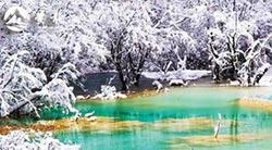 冬雪四川最美 不去北國也能感受銀裝素裹