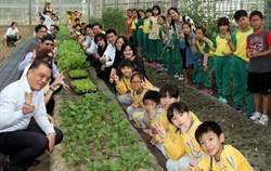 嘉大食農教育  向下扎根推無毒耕種