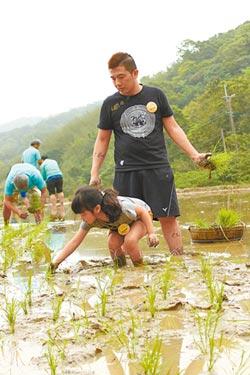 千歲米農田再生 嵩山社區獲表揚