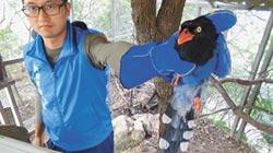 烘爐地藍鵲叫 查獲農家違法飼養