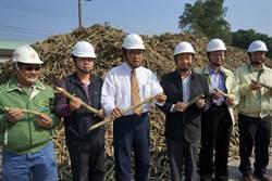 傳承逾百年  善化糖廠開工製糖