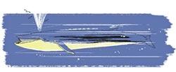 開卷書摘嚴選-目標南極 追尋藍鯨
