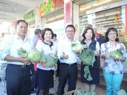 東港農會高麗菜2顆50 促銷價到明天